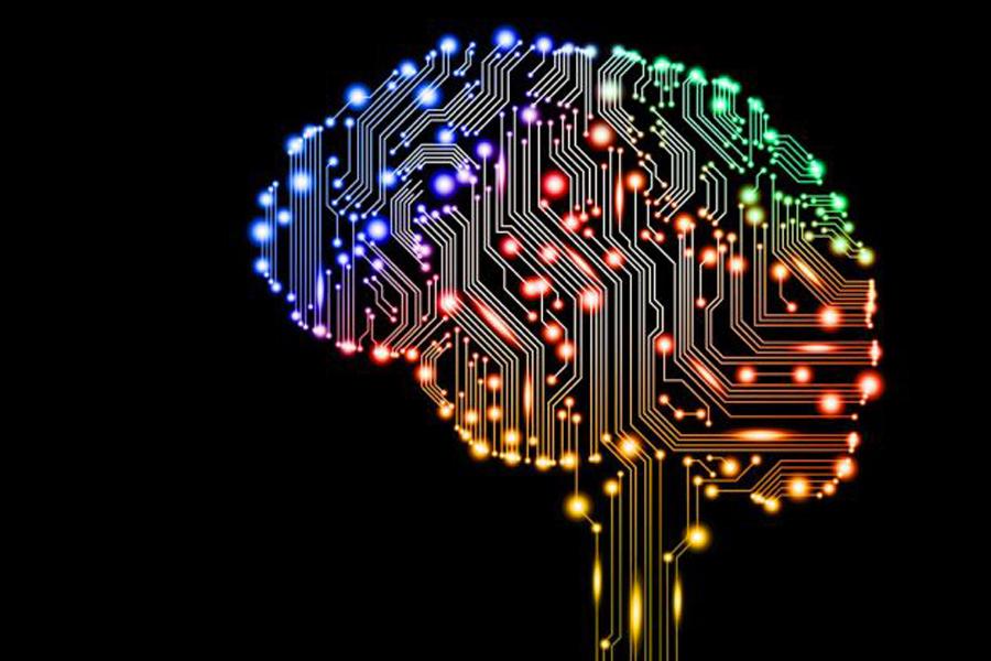 Cerebro con señales