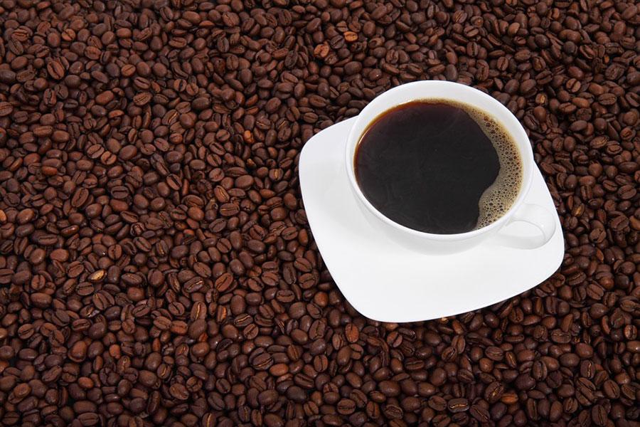 El café se encuentra en peligro debido al cambio climático