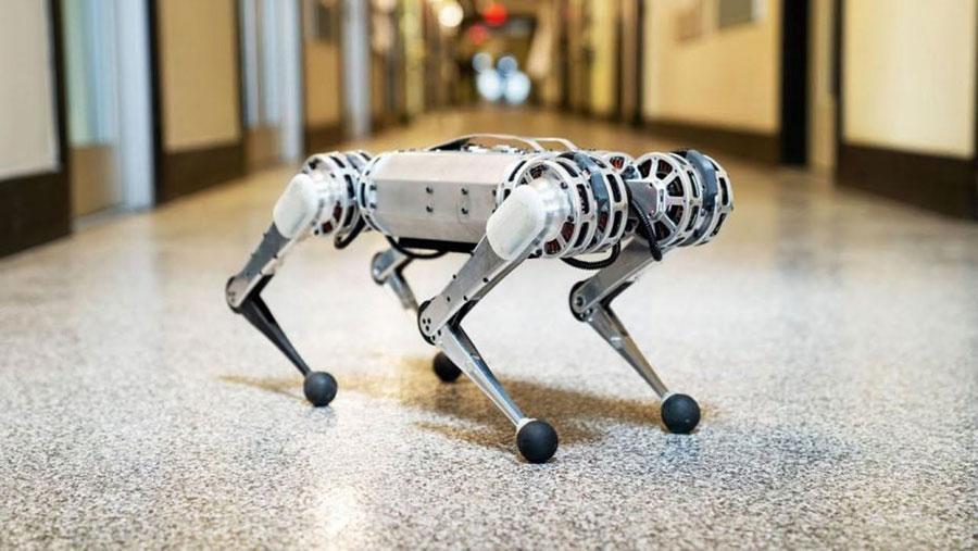 Video | Mini cheetah: el primer mini robot cuadrúpedo que