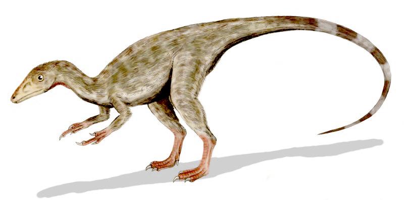 Piel de dinosaurio
