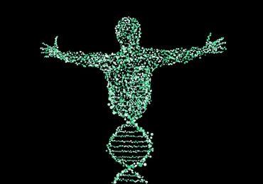 variantes genéticas