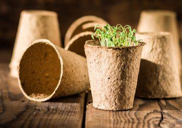 Biodegradables
