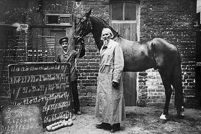 Hans caballo