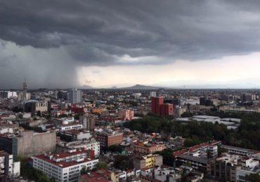 hongo de lluvia
