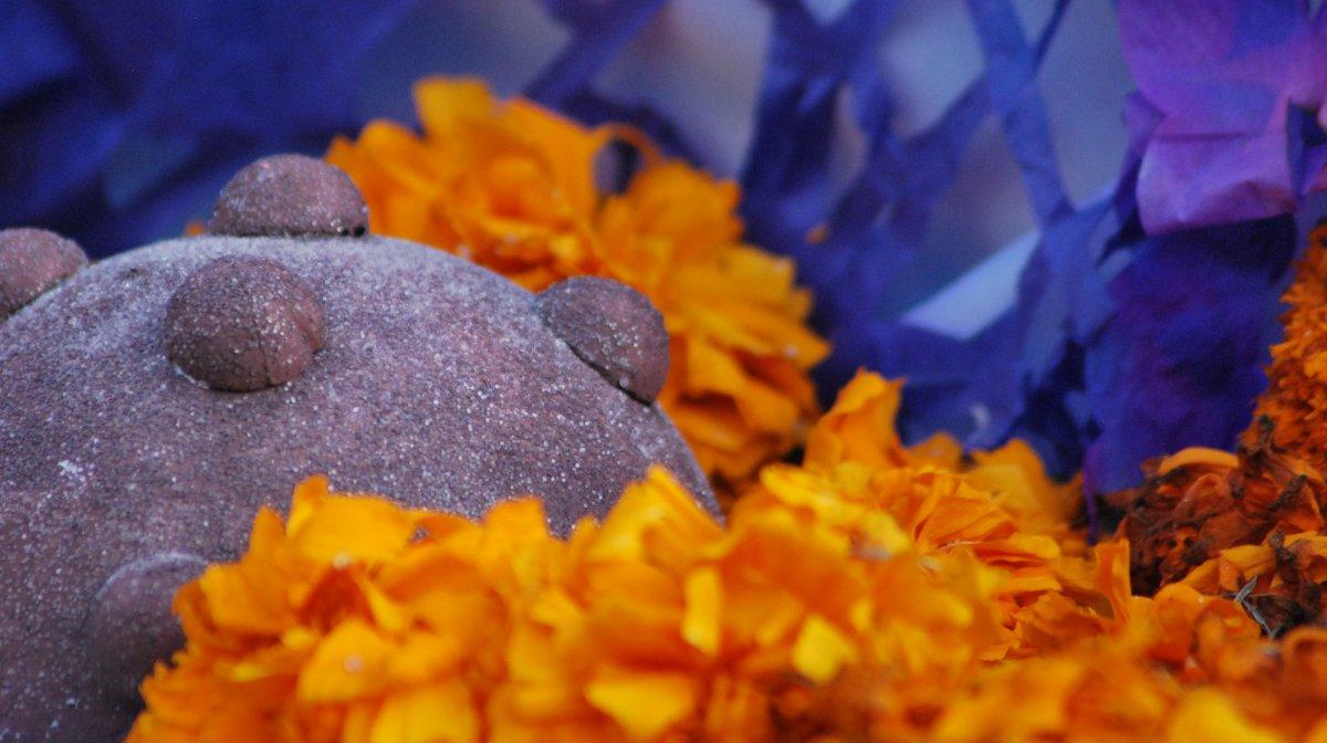 ¿Cuál es la historia del Pan del Muerto tradicional?