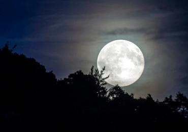 luna del castor