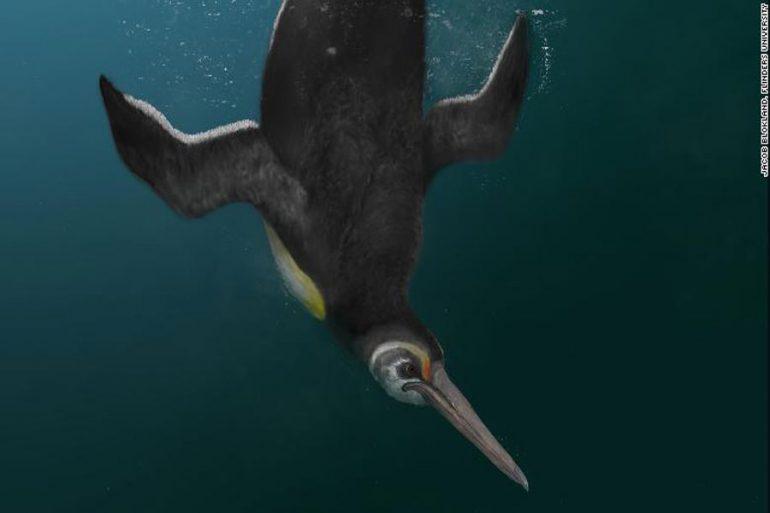 Pingüinos gigantes