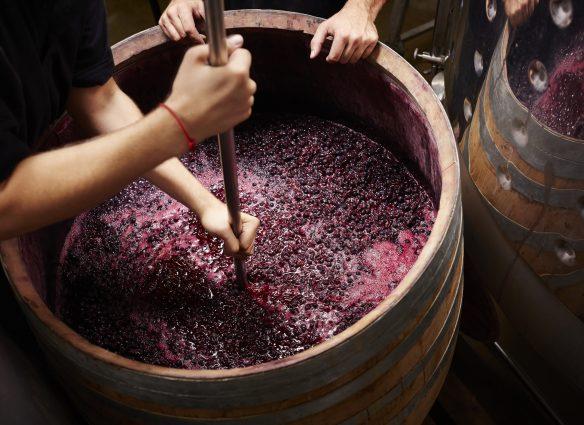 regiones vinícolas