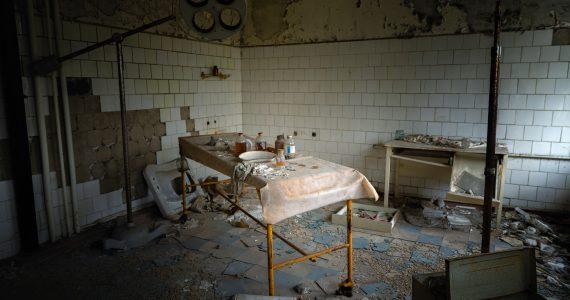 Hongos de Chernóbil