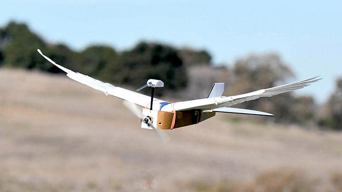 Robot usa plumas para volar