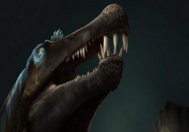 spinosaurus-dinosaurio