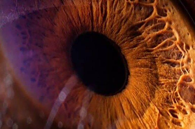 ojo artificial hong kong
