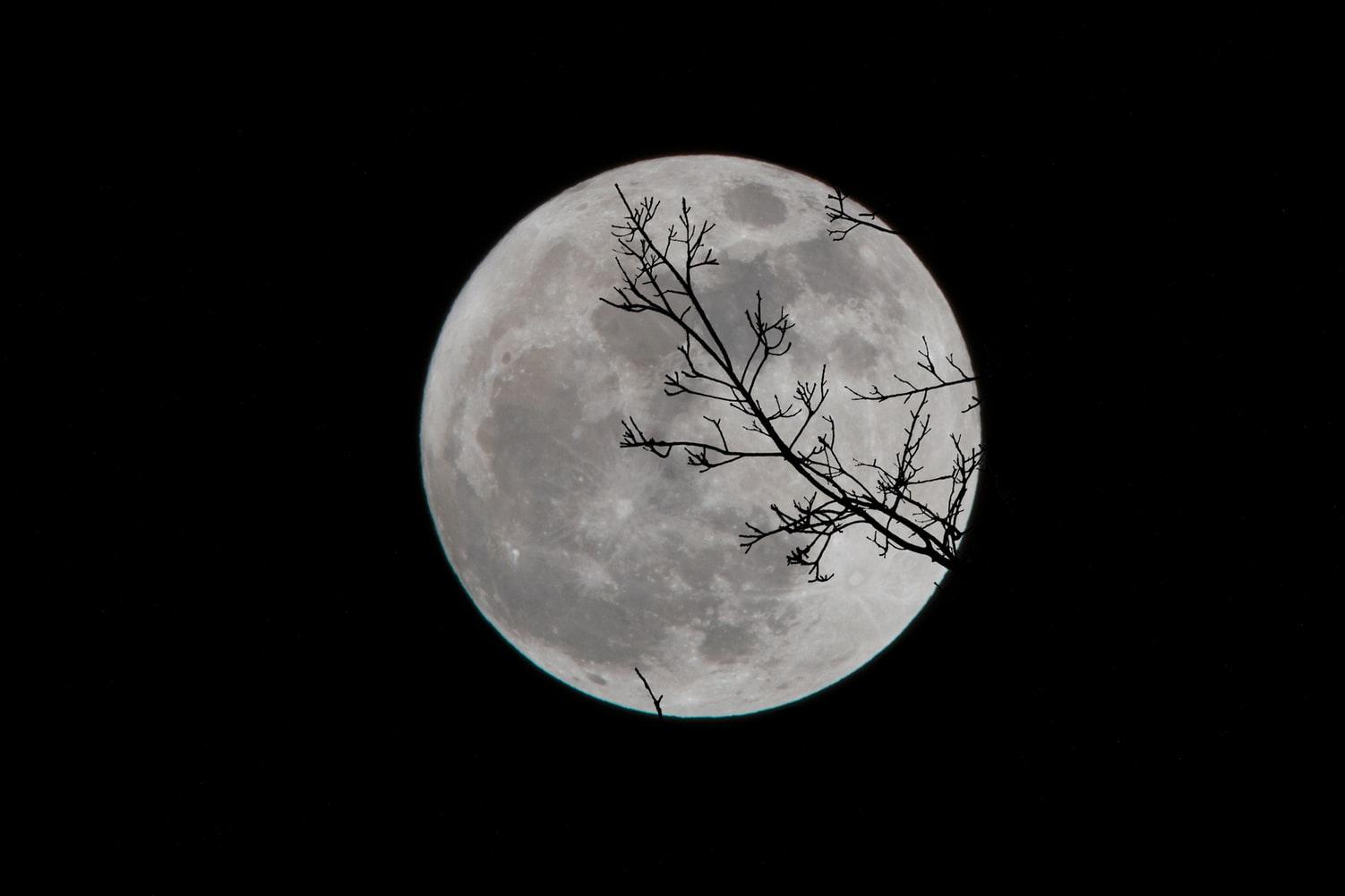 Luna desapareció