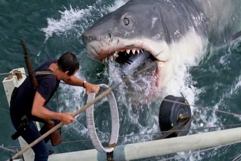 Tiburón google earth
