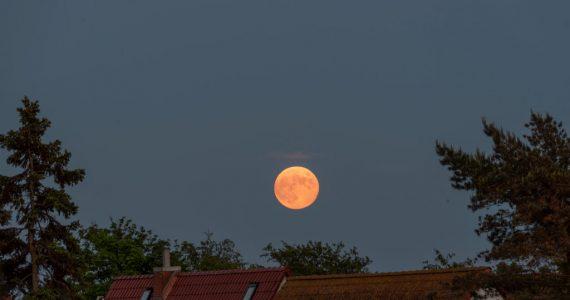 luna de fresa eclipse lunar 5 de julio