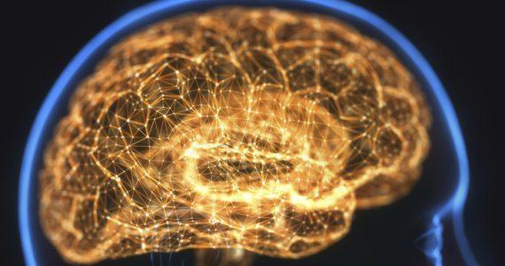 malos hábitos cerebro