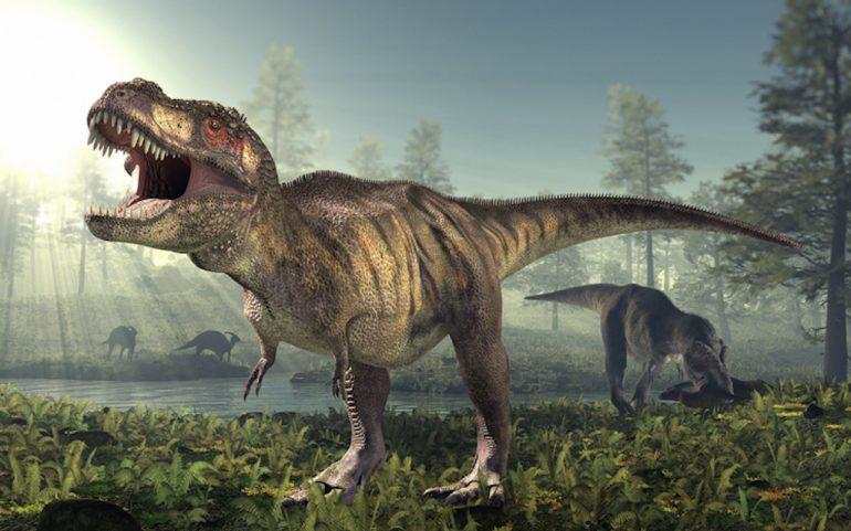 T Rex cómo era realmente el rey de los dinosaurios