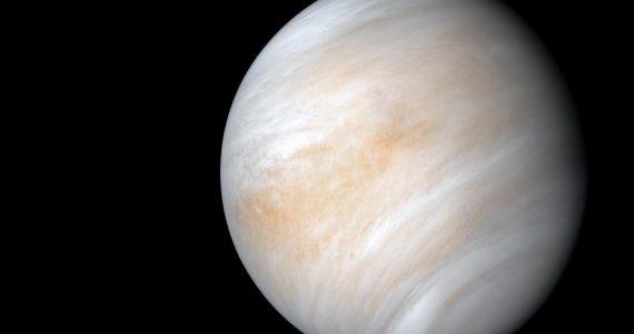 vida en las nubes de Venus