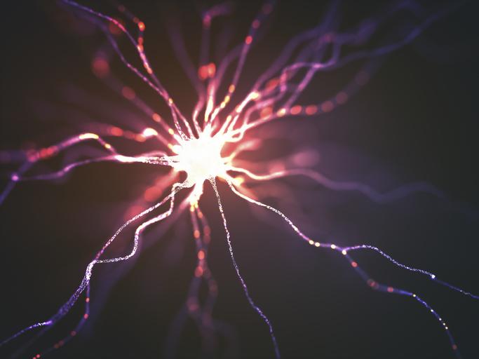 neuronas Vesubio