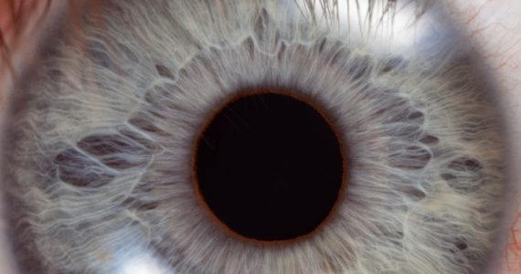 ojo humano colores