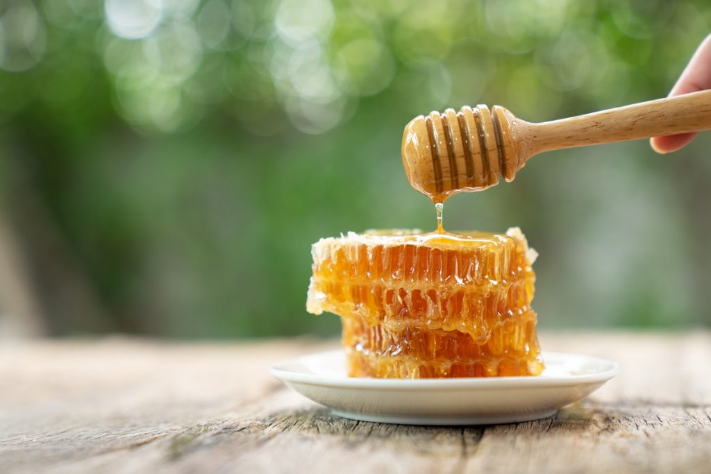 miel de abeja colmena datos informacion