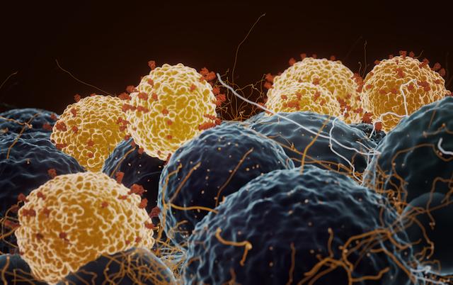 Covid-19 testículos espermatozoides