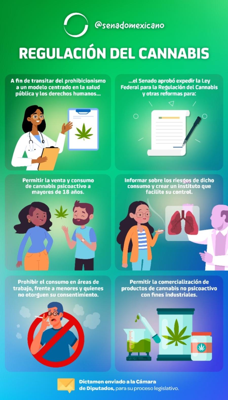 uso adulto de la marihuana en méxico