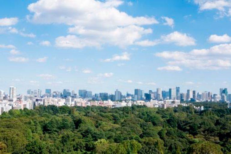 ¿Una ciudad sustentable o sostenible?