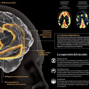 La empatía en el cerebro