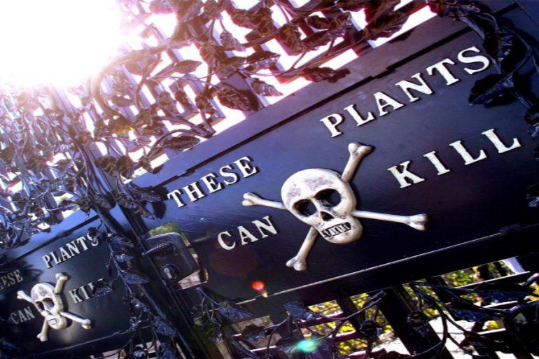 jardín con plantas asesinas