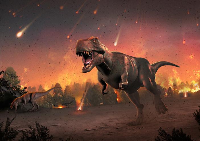 Dinonegacionistas