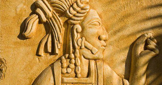pared maya