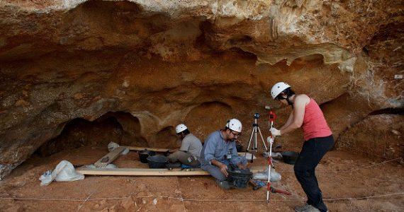 ADN Neandertal