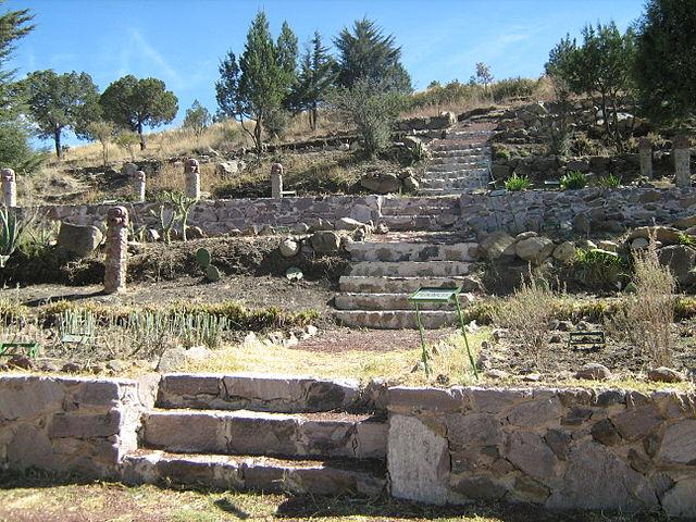 primer jardín botánico
