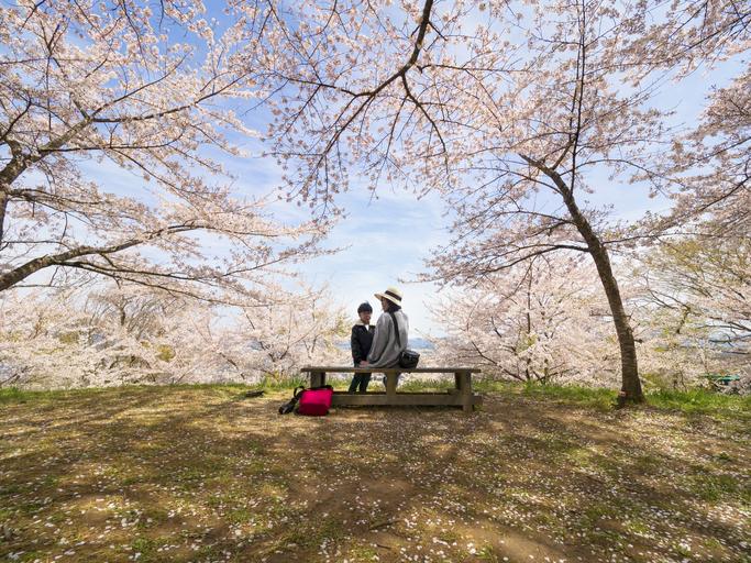 burials in Japan