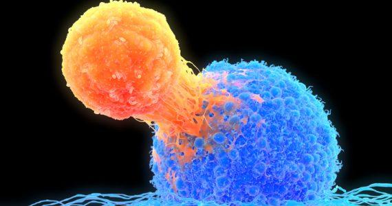 vacuna contra el cáncer