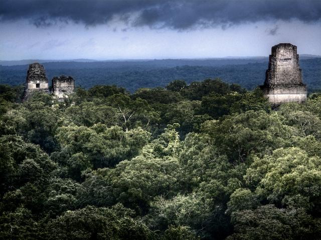Tikal mayas