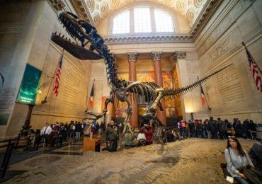 revivir a los dinosaurios