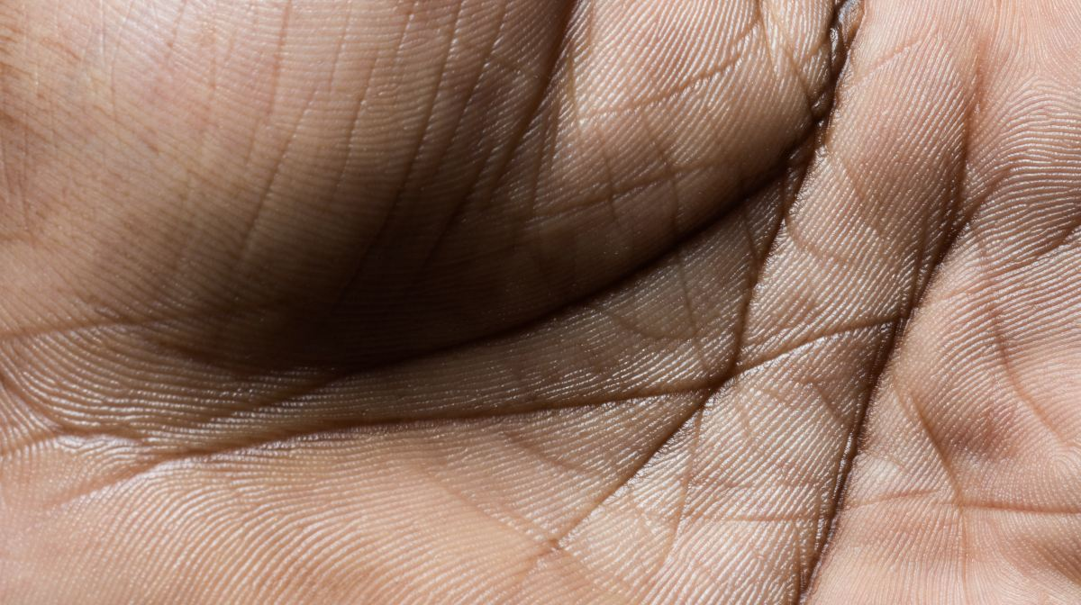 ¿Qué significan las líneas de la palma de la mano?