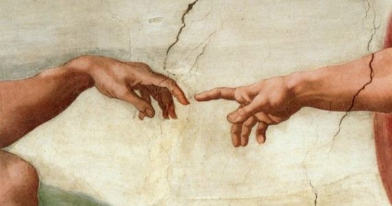 testosterona determinaría tamaño de dedos y pene
