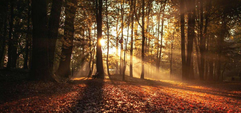 Equinoccio de otoño: qué es y cómo se celebra en el mundo