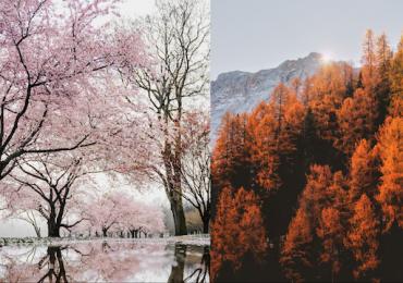 estaciones del año hemisferios